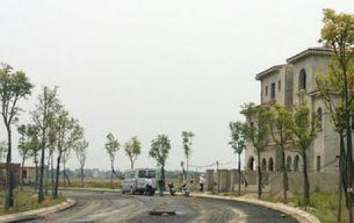 Đất Bán Đg Số 16 Ng Lương Bằng Quận 7, Cách Ng Văn Linh 500m, Giá 1ty31, Sổ Hồng Riêng
