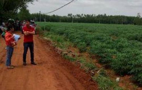 Bán đất nền gần KCN Phước Bình, giá 290 triệu/nền. Sổ riêng thổ cư 100%