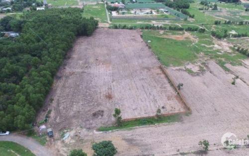 Bán gấp lô đất ngay QL51  thuộc Phường Phước Hòa - Phú Mỹ giá 270 triệu cách Bà Rịa 8km