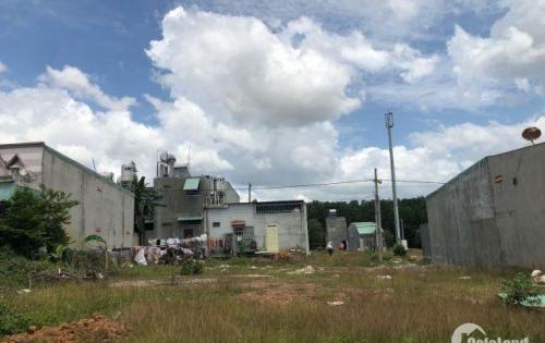 Cần tiền gấp nên bán 450m2 (15x30m) Đất Thủ Dầu Một, 4 sổ ngay khu công nghiệp Nhật Hàn Bình Dương