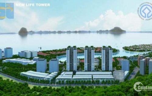 Bán và cho thuê căn hộ New Life Tower Hạ Long