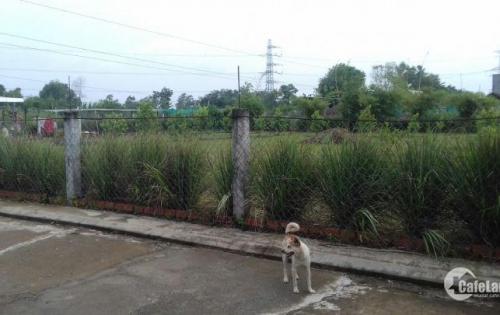 Bán đất thổ vườn đẹp ShR diện tích 1100m2 giá 5ty7 tại Lê Văn Lương-Nhơn Đức.