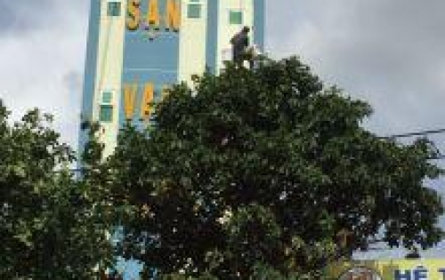 Cần bán khách sạn 6 tầng giá tốt Lh 090526.83.82