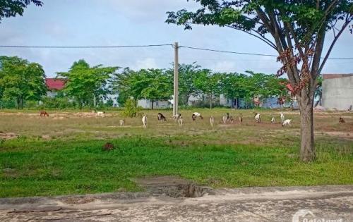 Sang gấp lô đất 300m2 đất ở mặt tiền trong khu đô thị mới Bình Dương. Sổ riêng thổ cư 100%