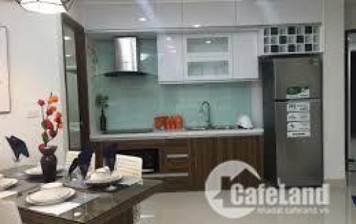 Cần tiền kinh doanh bán cắt lỗ 100 triệu căn hộ CT10 Đại Thanh 56m2, full nội thất.