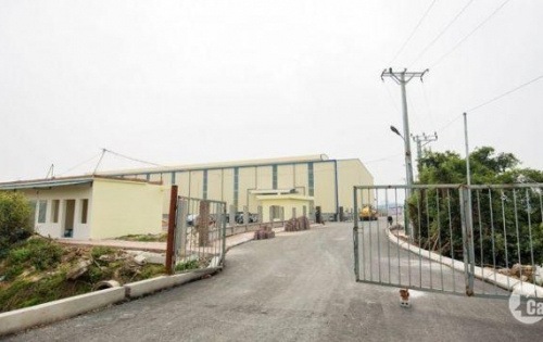 Cho thuê nhà xưởng mới xây tại Thanh Hóa Bỉm Sơn 2005m đến 6015m giá rẻ