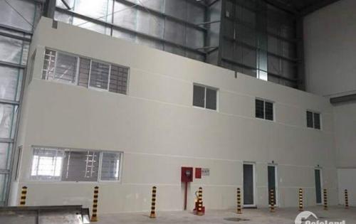 Chính chủ cho thuê nhà xưởng đường Trung tâm - khu công nghiệp Long Hậu, dt 1.645m2