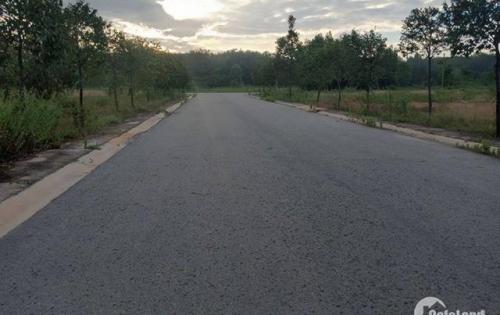 Cơn sốt đất Mỹ Phước 4 khi Khu 5B nhỏ được thông đường chính