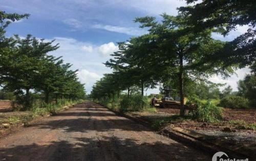 Bán lô đất nền gần sân bay quốc tế Long Thành 10 tr/m2, liền kề sân Golf, Khu hành chính Biên Hòa. LH 0932101106
