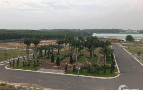 Bán gấp lô đất trong khu dân cư Phước Thái Mail mặt tiền quốc lộ 51, gần công viên trung tâm thương mại hồ bơi.
