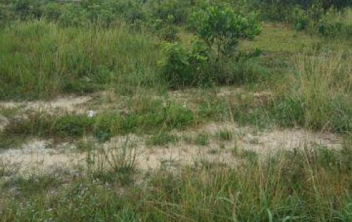 Bán 2 lô đất sổ đỏ chung 5x15m2 ngay ngã 4 cây sung trảng dài