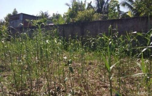Bán đất vườn 55,2m2 quận Bình Thủy