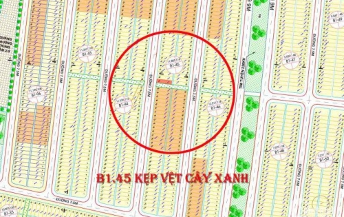 Bán đất gần cầu Nguyễn Tri Phương và Đại lộ trung lương B1.45 kẹp vệt cây xanh , đường thông