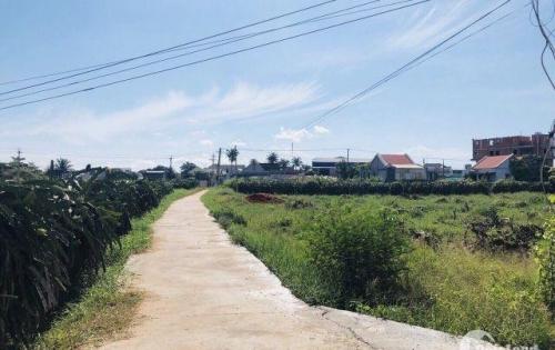 Bán đất ngay mặt tiền QL1A, Hàm Thắng, Hàm Thuận Bắc chỉ 4,3tr/nền