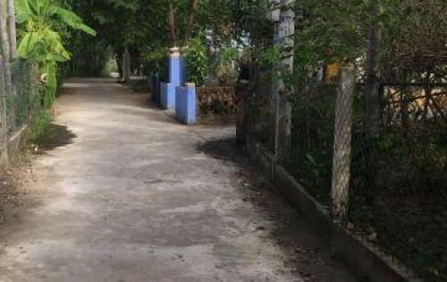 Chính chủ cần bán gấp lô gần Hoa Sứ Villa, giá chỉ 10tr5/m2, Cẩm Thanh, Hội An