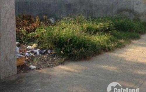 Bán Gấp Thổ Cư Huyện Bình Chánh Xã Đa phước DT 300m2 SHR Đường Liên Ấp 1 2
