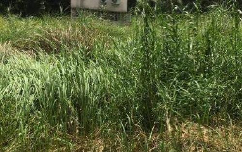 Cần bán lô đất đẹp, ở kdc 13C Greenlife, dt: 85m2, có sổ giá tốt nhất nội khu.