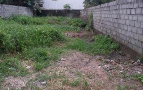 Bán lô đất 150m2 Lại Hùng Cường, Bình Chánh