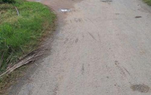 Đất 2MT thổ cư đường Cây Trôm phước hiệp Củ Chi, SHR, 750TR