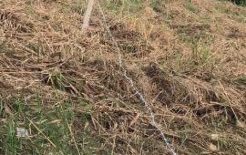hót ! hót! bán nhanh đất thổ vườn 20x50m hẻm 6m sổ hồng riêng chỉ 5tr5/m tại phạm hữu lầu giáp PMH2