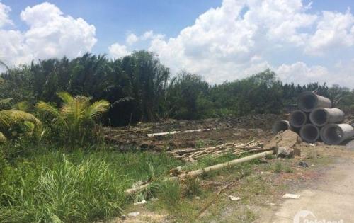 Bán tháo lô đất 360m2 Nguyễn Văn Tạo, Nhà Bè giá 2,8 tỷ