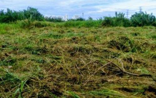 Bán lô đất hẻm đường Phạm Hữu lầu_Phước Kiển_Nhà Bè DT:1000m2