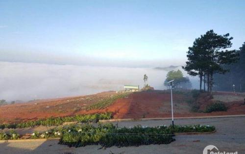 Dự Án Đất Nền Đầu Tiên Sổ Đỏ Lâu Dài - Tại Đà Lạt