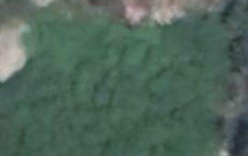 Bán đất mặt tiền đường số 11 shr thổ cư 100%