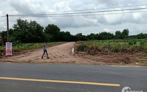 Đất Nền Liền Kề KCN Phú Mỹ Tỉnh Bà Rịa – Vũng Tàu