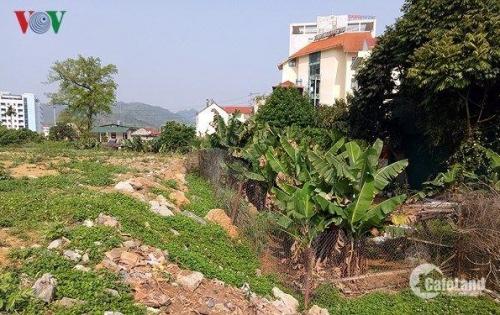 Bán đất chính chủ tại xã Dương Quan