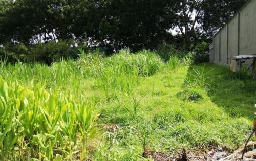 Ra đi gấp lô đất thổ cư giá rẻ cách KCN Trảng Bàng 1km
