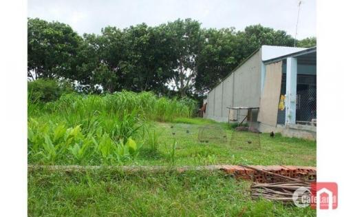 Gia đình cần tiền gấp nên cân bán miếng đất thổ cư giá rẻ để thu hồi vốn