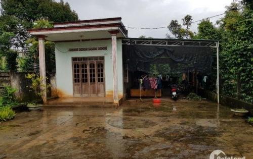 Bán nhà vườn ao cá, tương lai Biệt Thự sân vườn tại Thôn 2 xã Ea Kao, Dt 4250m2 chỉ 1,25tỷ