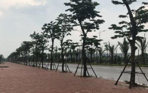 Chính chủ biệt thự B2.2 BT8 ô 32 Thanh Hà Cienco5- Hà Đông, Hà Nội