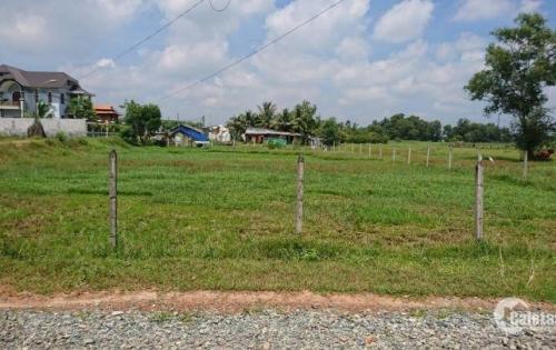 cần tiền  Bán gấp lô đất gần trung tâm hành chính huyện Củ Chi, 129m2 chỉ 599Triệu ,chính chủ