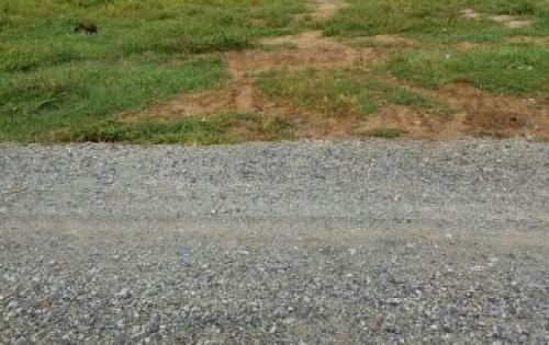 Bàn lô đất CỦ CHi, đường Cây Trôm - Mỹ Khánh
