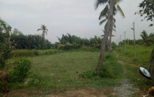Cần tiền bán lô đất đối diện khu du lịch BCR quận 9