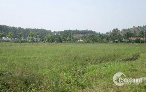 Bán đất nền dự án Bến Lức _giáp HCM 380 triệu, 70m2_(5x14m)_Liền kề khu dân cư Bến Lức. Liên hệ: 0384422082