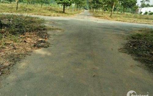 Bán đất mặt tiền đường Bắc Sơn - Long Thành trục chính vào sân bay LH 093 8877287
