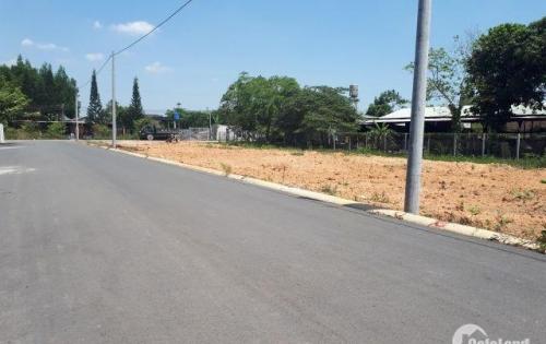 Đất sổ riêng 100m2, thổ cư 100% ngay vòng xoay 60m, Biên Hòa, mặt tiền đường 60m, giá 650 tr/nền