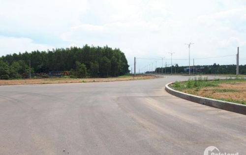 Đất thổ cư giá đầu tư TP. Biên Hòa SHR, 450 triệu/100m2, thổ cư 100%, đường nhựa 60m