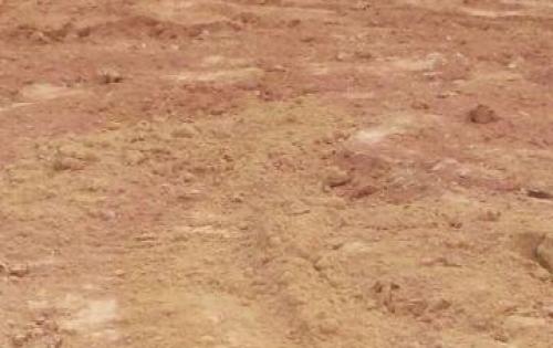 Đất nền giá rẻ Biên Hòa, SHR, Đường 60m, Gần KCN, Giá 450 triệu/nền