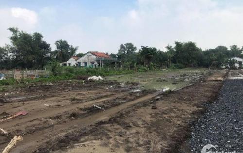 cần bán lô đất mặt tiền đường 835, 100m2, đã có shr