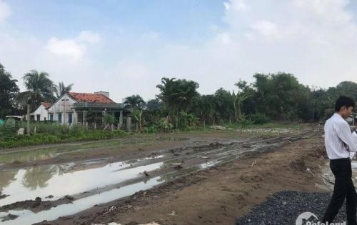 đất sau chợ Bình Chánh shr XDTD 100m2