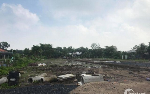 lô đất gần kcn Cầu Tràm có SHR, XDTD, 100% THỔ CƯ
