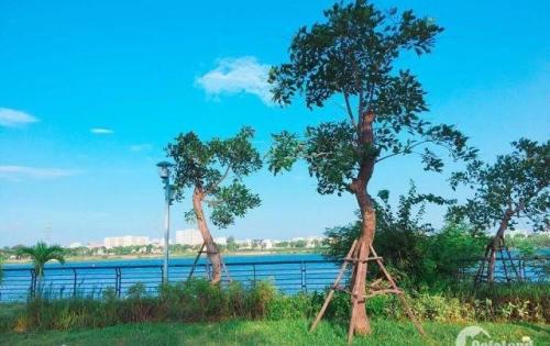 - Bán đất dự án SHB ven sông Hàn trung tâm Hải Châu Đà Nẵng chỉ 4.6 tỷ