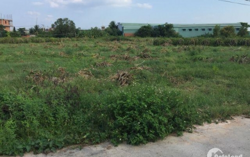 Đất nền xã Hàm Thắng cách quốc lộ 1A 50m, xây dựng tự do, sổ riêng