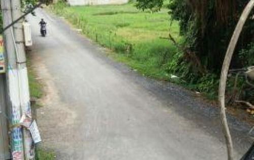 Cần bán gấp 2 lô đất chính chủ vào hẻm 1/ đường Vĩnh Lộc, Vĩnh Lộc B