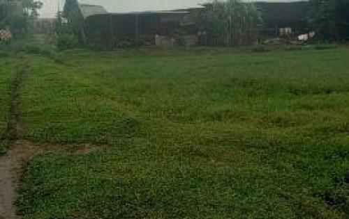 Có mấy lô đất cần bán đối diện UBND Vĩnh Lộc B, Bình Chánh, giá từ 195tr/ lô. Lh ngay 0902 967 530