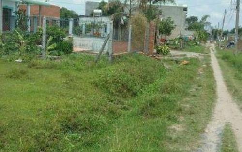 Đất bán rẻ ấp Bàu Sim huyện Củ Chi